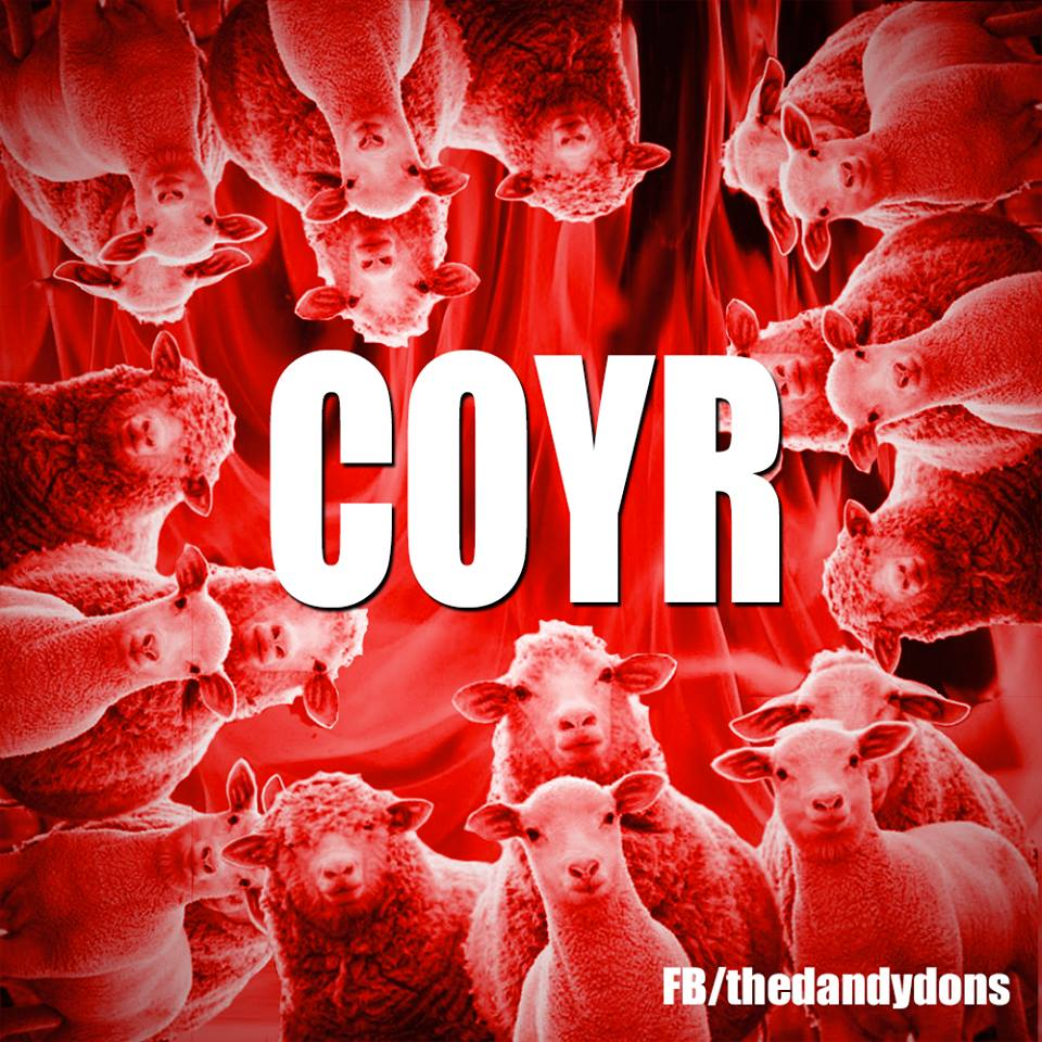 sheep-coyr
