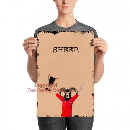 sheep dandy willie miller