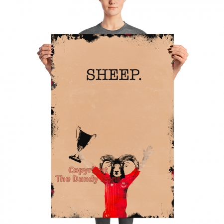 sheep dandy willie miller aberdeen